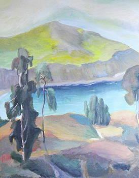 Coastal Eucalyptus by James Lopez