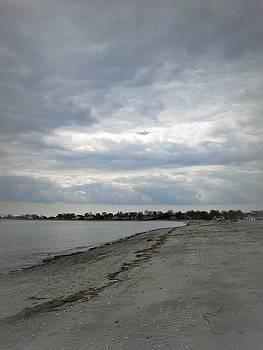 Coastal Winter by Kristine Nora