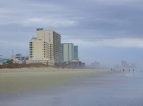 Coastline by Cathy Harper