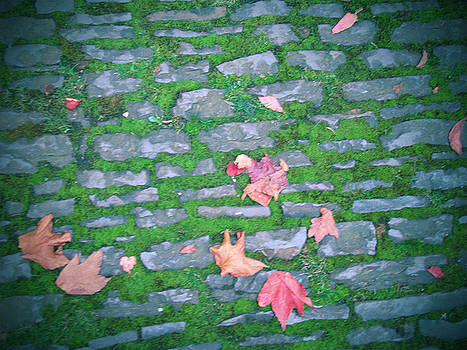 Cobblestone Path by Rhianna Wurman
