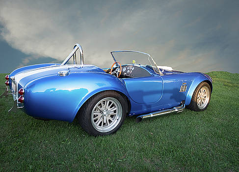 Cobra Blue by Paul Barkevich