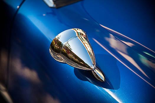 Cobra mirror by Patrick  Flynn