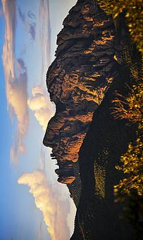 Skip Hunt - Cochise Head