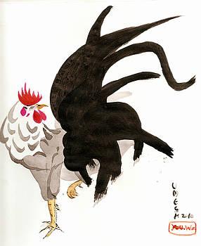 Cockerel by Umesh U V