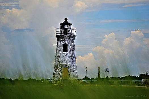 Cockspur Lighthouse Through the Grass by Tara Potts
