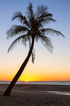 Coco Mo Tropical Sunrise by James BO Insogna