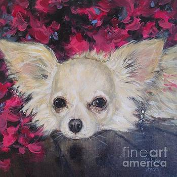 Coco by Vickie Fears