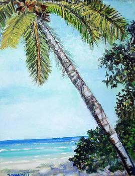 Cocos Keeling Islands by Teresa Dominici