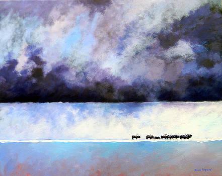 Cold Front by David  Maynard