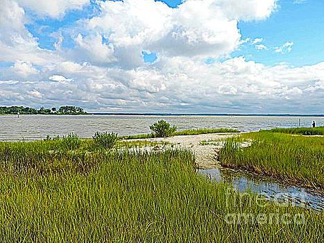 Colonial Parkway by Angela Weis