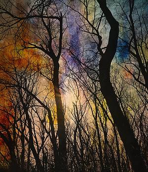 Gothicolors Donna Snyder - Color Blast