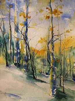 Colorado Bright Morning 1 by Robin Miller-Bookhout