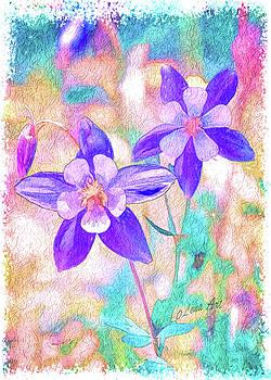 Colorado Columbine Flower by OLenaArt Lena Owens