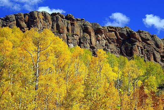 Marty Koch - Colorado Fall 3