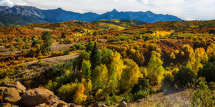 James BO  Insogna - Colorado Fall Foliage Color Panorama