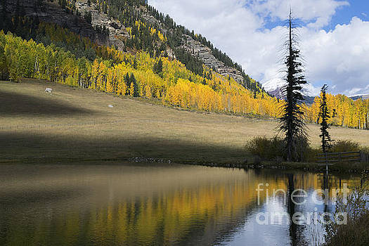 Jerry McElroy - Colorado Fall Reflections