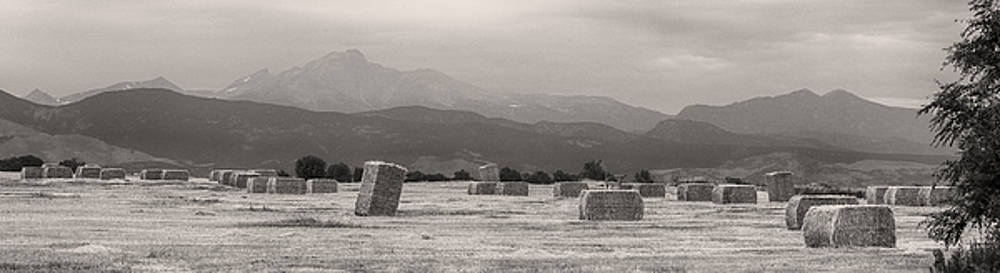 James BO  Insogna - Colorado Farming Panorama View in Black and White
