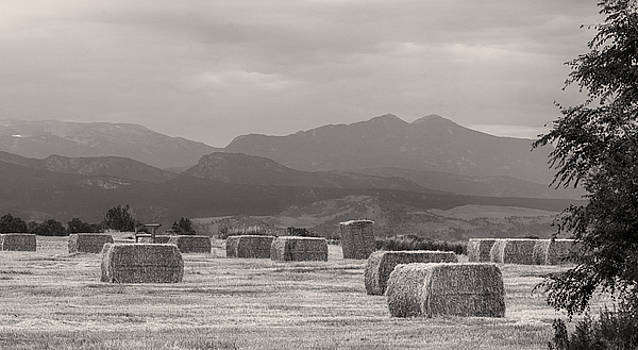 James BO  Insogna - Colorado Farming Panorama View in Black and White Pt 2