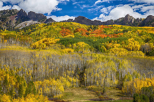 James BO  Insogna - Colorful Colorado Kebler Pass Fall Foliage