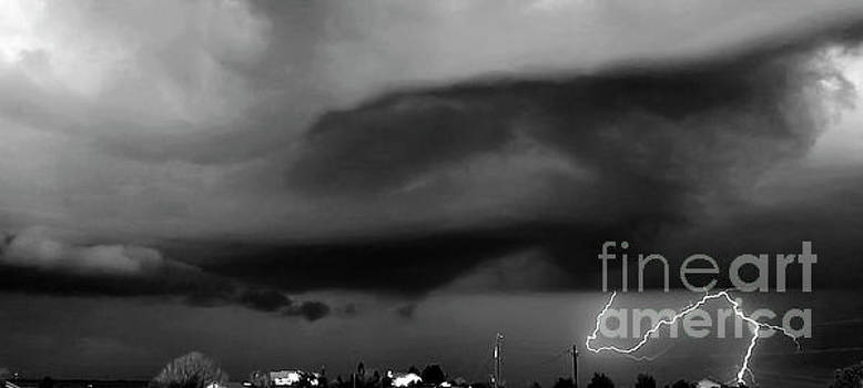 Colorado Lightning black and white by Deniece Platt