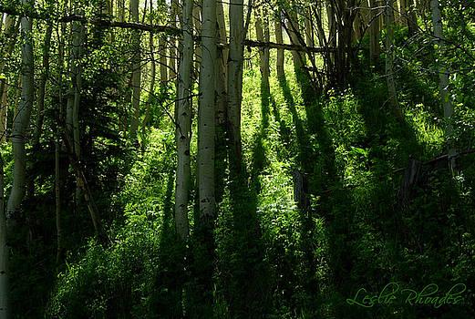 Leslie Rhoades - Colorado Shadows