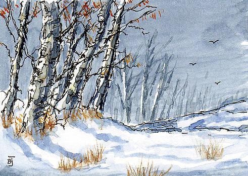 Barry Jones - Colorado Winter