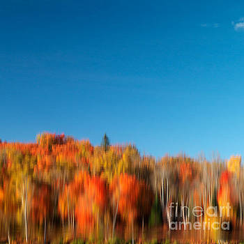 Colorful abstract fall nature reflected scenery by Oleksiy Maksymenko