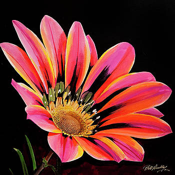 Colorful Bloom by Bill Dunkley