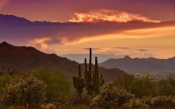Saija  Lehtonen - Colorful Desert Skies