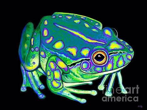 Nick Gustafson - Colorful Froggy 2