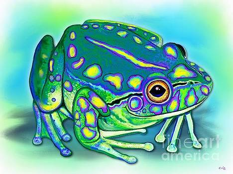 Nick Gustafson - Colorful Froggy