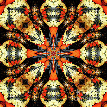 Colorful Gourds Abstract by Smilin Eyes  Treasures