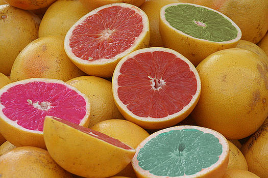 Colorful Grapefruit by Nanette Hert