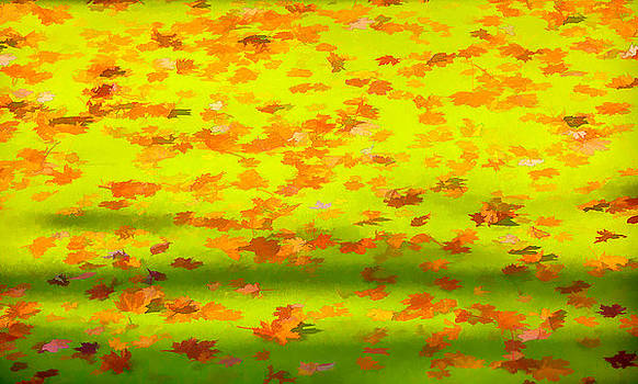 David Letts - Colorful Leaves on Canal