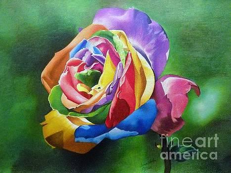 Colorful Rose by Sonya Walker