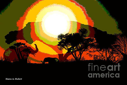 Colors Of Africa by Sharon K Shubert