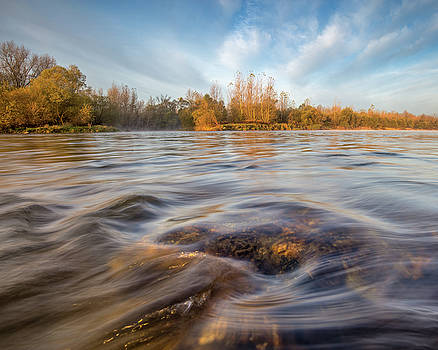 Colors of autumn by Davorin Mance