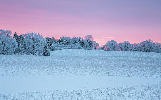 Colors of Winter by Penny Meyers