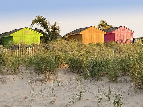 Colors on the Beach by Andrew Kazmierski