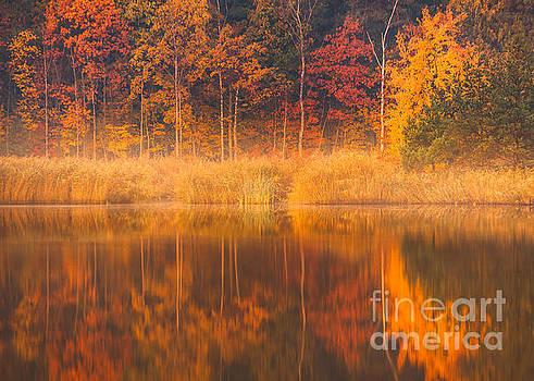 Colors by Pawel Klarecki