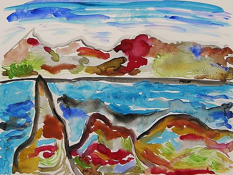 Colors, Rocks, Sea by Mary Carol Williams