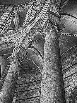 Diana Haronis - Columns Black and White