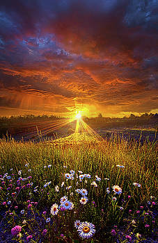 Come Again Another Day by Phil Koch