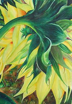 Come Closer - Sunflower 3 by Doris Daigle