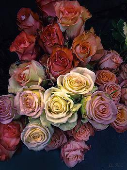 Coming up Roses by John Rivera