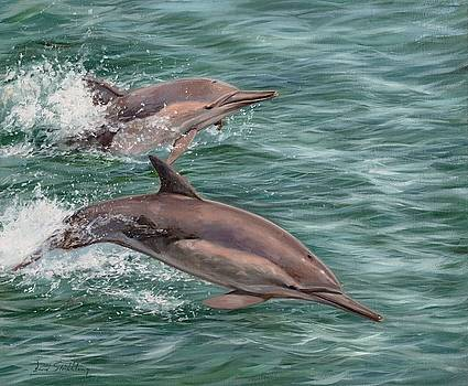 Common Dolphins by David Stribbling