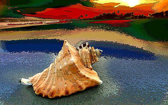 Conch Shell On Beach by Charles Shoup