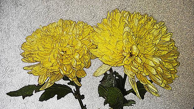Conversations in the Flower Garden by Bobbie Barth