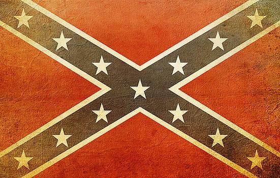 Confederate Flag  by Susan Bordelon