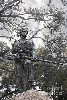 Confederate Soldier by Ella Kaye Dickey